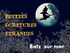 """""""Petites écritures étranges"""", Batz sur Mer, 2009, Culturel"""